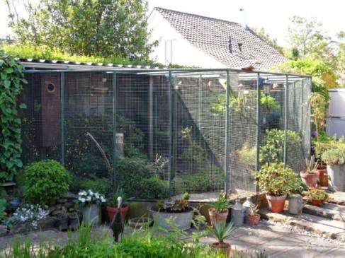 Muizen Bestrijden Forum : Muizen in voliere u hydrocultuur planten